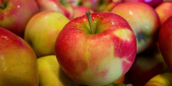 apples stow