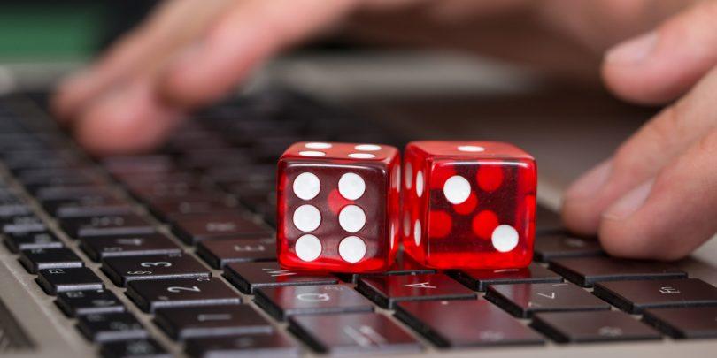 play games in the online sport websites